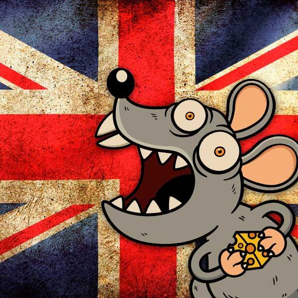 Super ratos invadem residências britânicas