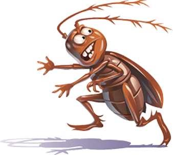Controle de insetos sp