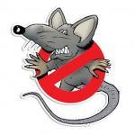 Dedetização ratos